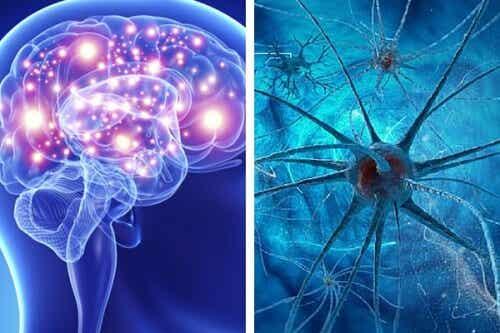 Diese Angewohnheiten schaden deinem Gehirn auf lange Sicht!