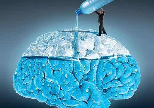Was Wasser für dein Gehirn tun kann