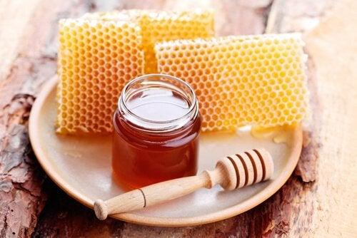 Bienenhonig für trockenes Haar