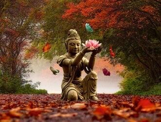 in freier Natur meditieren