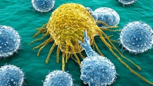 Molekül zur Behandlung von Eierstockkrebs und Bauchspeicheldrüsenkrebs