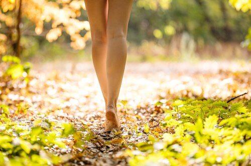 Besenreiser an den Beinen verhindern