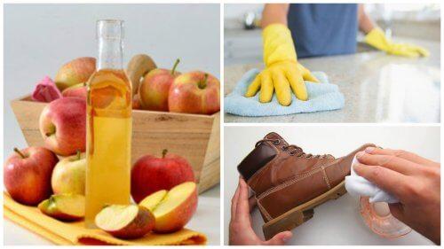 7 nützliche Anwendungen von Apfelessig im Haushalt