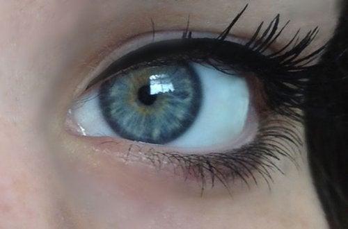 hellblaue Augenfarbe