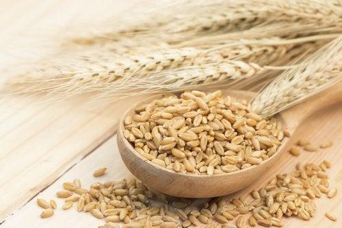 Gerste enthält wichtige Kohlenhydrate