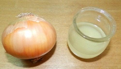 Zwiebel und Zitronensaft