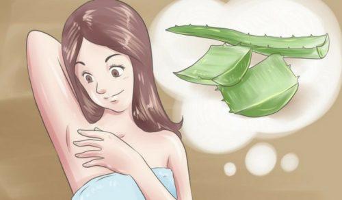 5 natürliche Deodorants gegen schlechten Achselgeruch