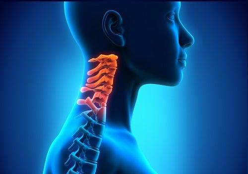 Schmerzen in der Halswirbelsäule