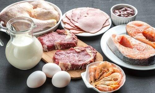 Fleisch und Milchprodukte
