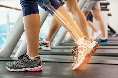 gesunde Knochen mit Gelatine