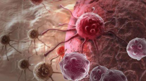 Neue Studie: Dies könnte die HAUPTURSACHE für Krebs sein