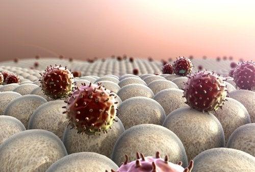 schwaches Immunsystem durch zu wenig Schlaf