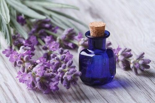 Ätherisches Lavendelöl gegen Nackenverspannungen