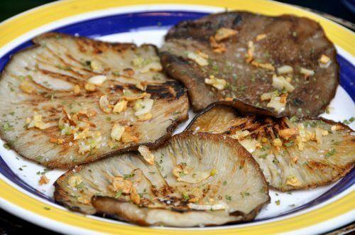 Leckere Rezeptideen mit Austernpilzen!