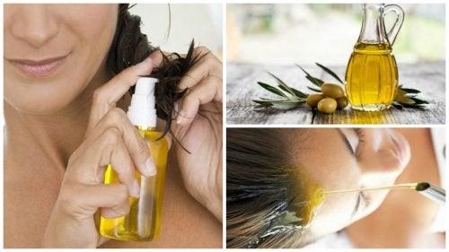 Schönere Haare Mit Olivenöl Besser Gesund Leben