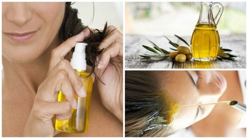 Schönere Haare mit Olivenöl