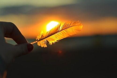 Sonnenuntergang mit Feder
