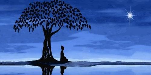 Meditation in der Nacht am See
