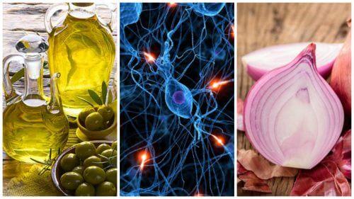 8 Nahrungsmittel für ein gesundes Gehirn