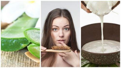 6 Hausmittel gegen Haarausfall