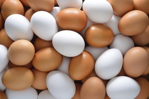 Eier haben gesunde Nährstoffe