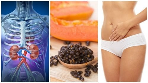 Du liebst Papaya? Auch die Kerne haben viele Vorteile!