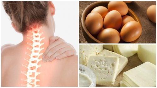 Nahrungsmittel mit viel Kalzium für gesunde Knochen