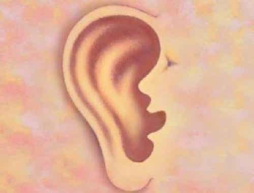 Was können deine Ohren über dich verraten?