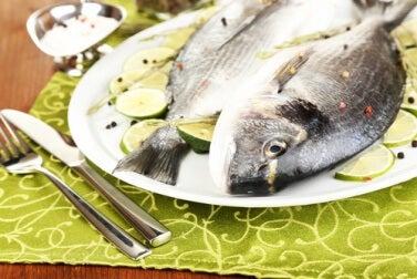 eiweißreicher Fisch