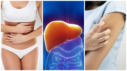 8 Symptome, die ein Anzeichen für eine vergiftete Leber sind