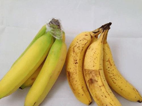 Bananen aufbewahren