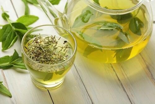 Kräutertees gegen Cellulite: auch grüner Tee kann helfen