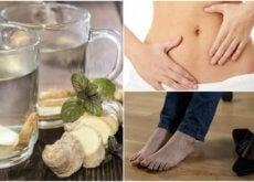 Ingwerwasser auf nüchternen Magen