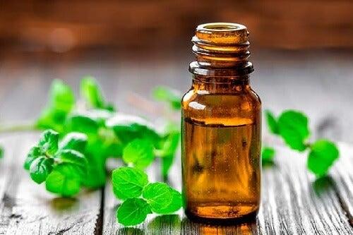 Öle gegen Arthritisschmerzen: Minzöl