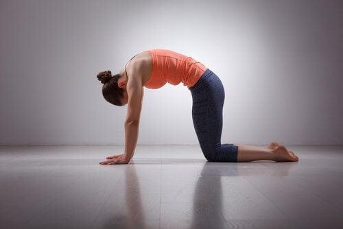 Rücken dehnen und Körper in Schwung bringen