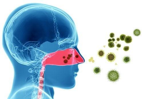Asthma behandeln