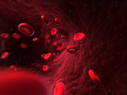 Warmes Wasser trinken: Blutkreislauf stimulieren
