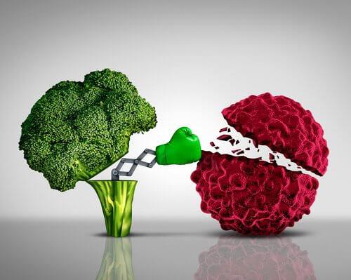 Brokkoli essen hilft in der Krebsvorsorge