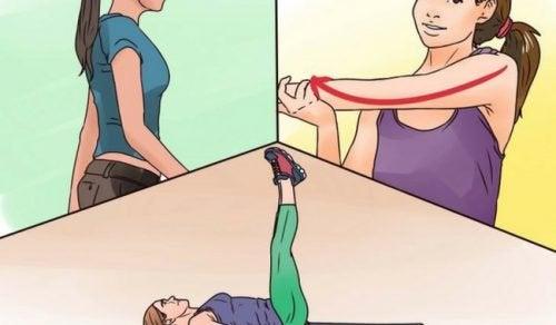 Training für elastische Muskeln