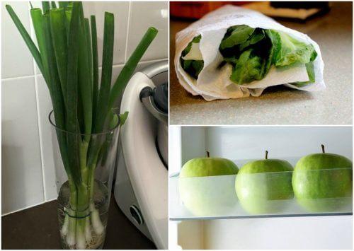 Mit diesen Tipps bleiben Lebensmittel länger frisch!
