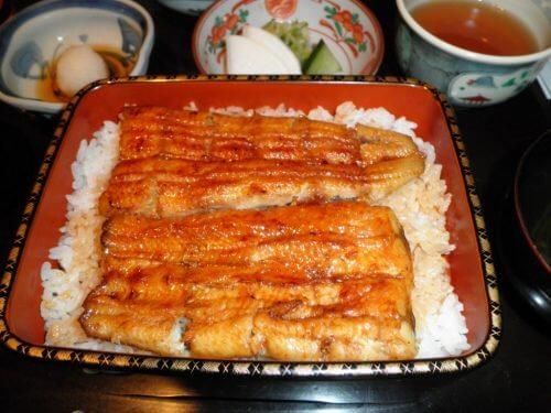 schadstoffbelastete Fischarten: Aal