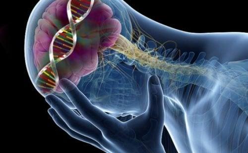 Niedriger Serotoninspiegel: 9 überraschende Auswirkungen