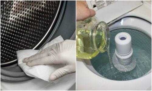 Waschmaschine ökologisch Reinigen