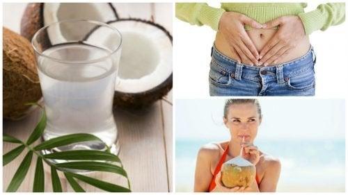 10 Eigenschaften von Kokoswasser