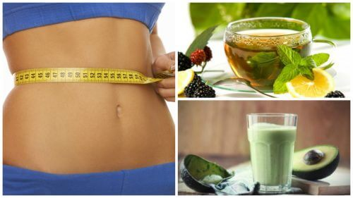 4 Rezepte zum Abnehmen mit grünem Tee