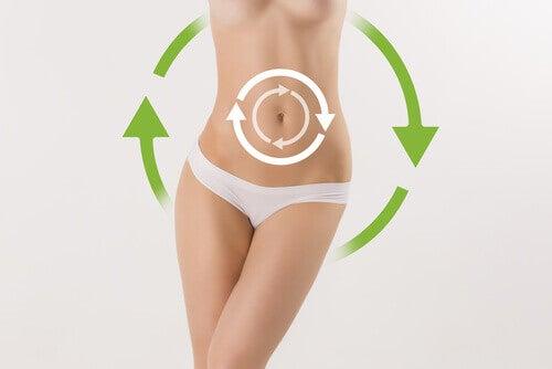 Körper im Gleichgewicht und ein gesunder Matabolismus