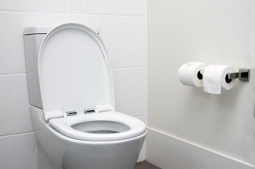 auf der Toilette Stuhlgang untersuchen