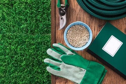 Gartenwerkzeuge mit denen man Heidelbeeren richtig pflanzen kann