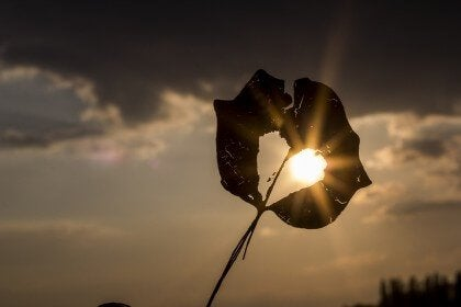 Herz vor der Sonne als Symbol für Frauenfreundschaften gegen Stress