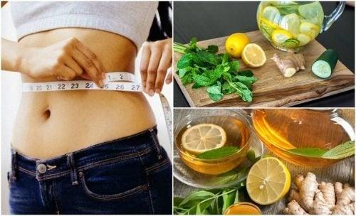 Ingwer Rezepte zur Gewichtsreduktion